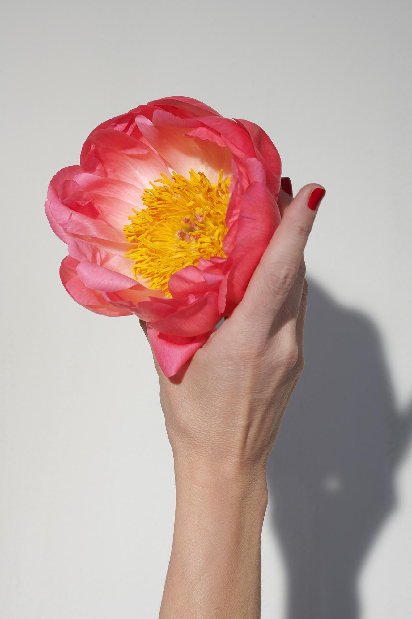 Sonja_Mueller_Flower